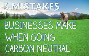 Reduce carbon footprint: 5 mistakes businesses make when going 'carbon neutral'