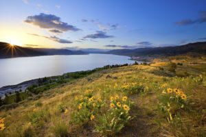 Eco-friendly Vacation Guide – Okanagan Valley