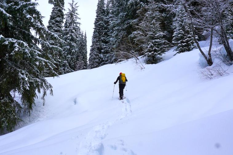 Action 4 - snowshoe trail