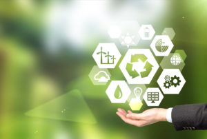 The ROI of Greening Your Tourism Business