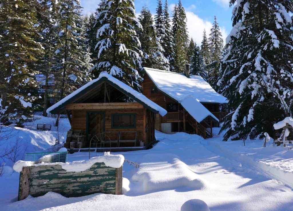 intro - business - lodge winter