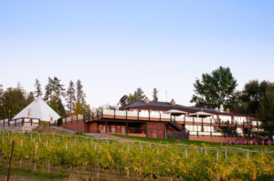 Green Wineries: Movers and Shakers in Sustainable Tourism