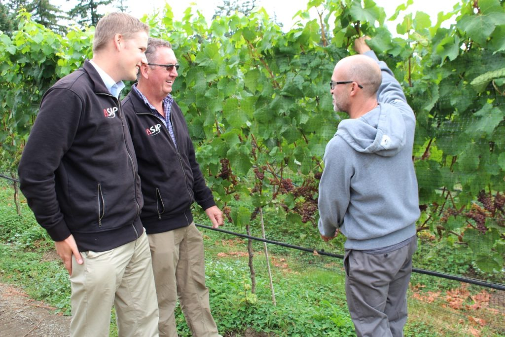John Carley and Mark Sylvester of ASAP Geomatix testing the bountiful crop with 40 Knots Vineyard and Estate Winery owner Layne Craig.