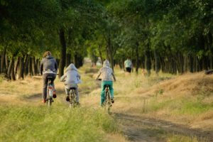 family biking through a field surrounded by forest