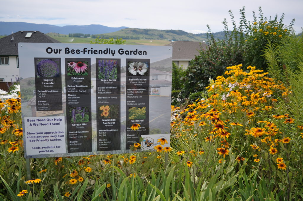 planet bee honey farm customer education on bee-friendly gardens