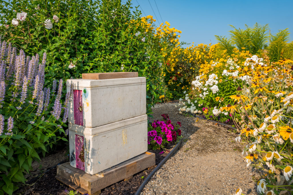 planet bee honey farm honeybee boxes vernon british columbia canada